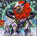 「レベル10・シンクロモンスター」おすすめ汎用カード一覧【遊戯王】